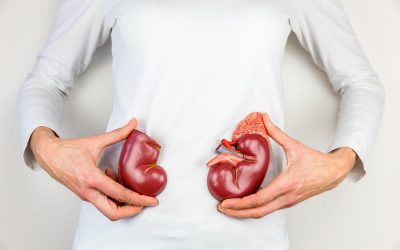 Common Causes of Kidney Disease in Older Adults